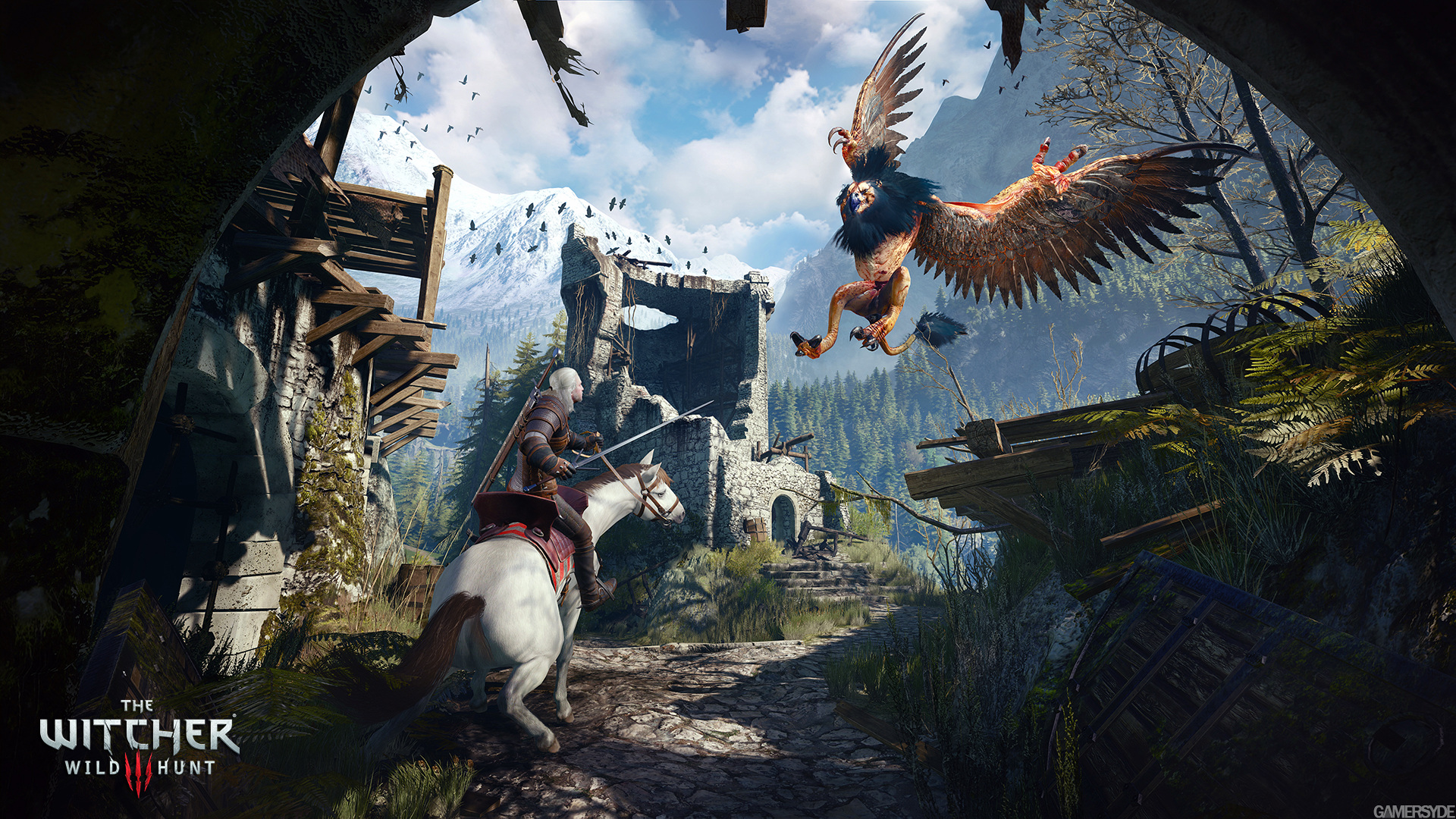 image_the_witcher_3_wild_hunt-27433-2651_0006