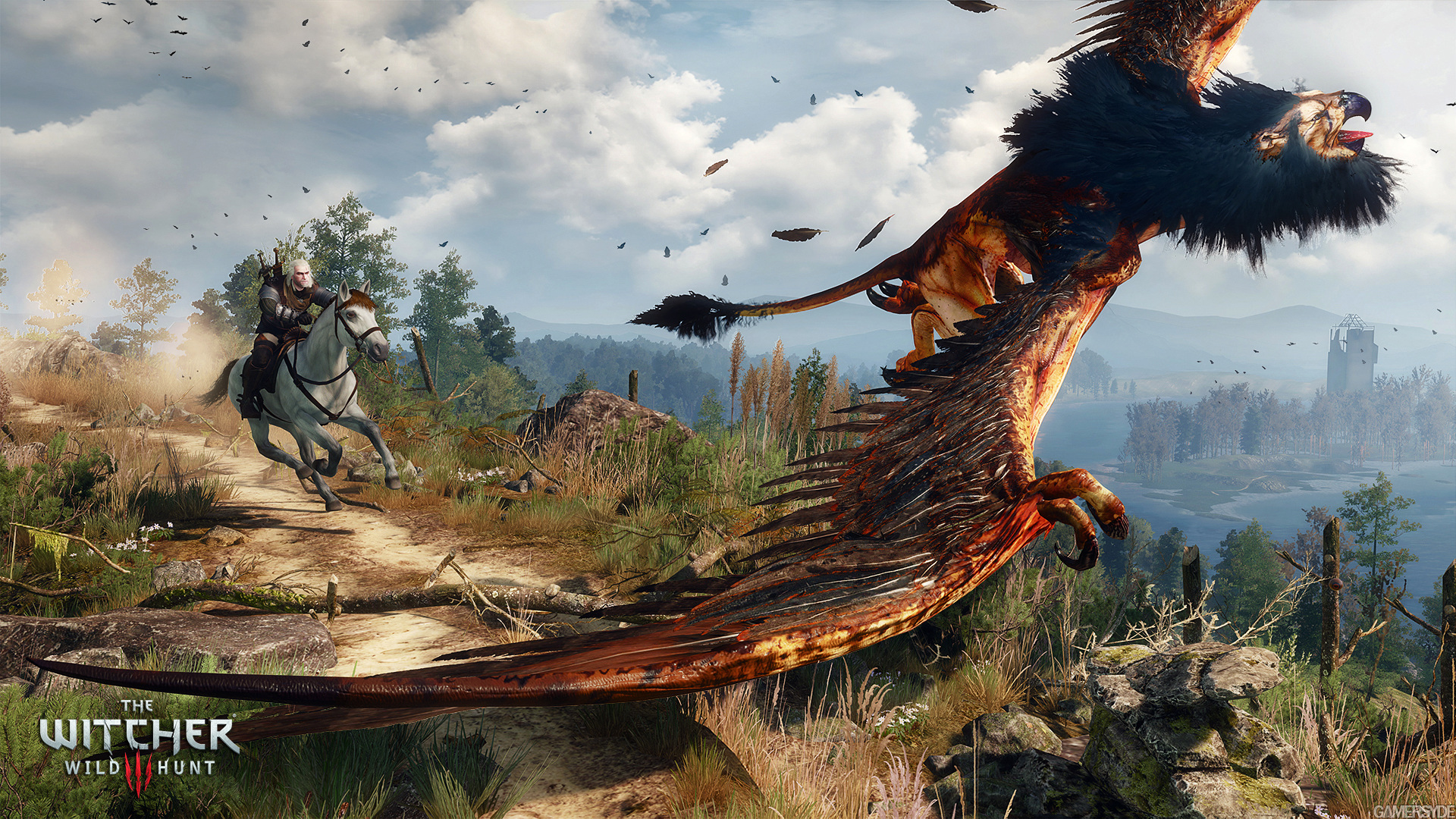 image_the_witcher_3_wild_hunt-27433-2651_0010